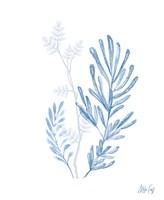 Branches III Fine-Art Print
