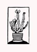Black Cactus Fine-Art Print