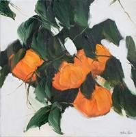 Oranges II Fine-Art Print