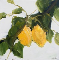 Lemons II Fine-Art Print