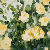 Yellow Roses II Fine-Art Print