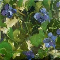 Violets Fine-Art Print
