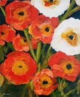Poppies Fine-Art Print