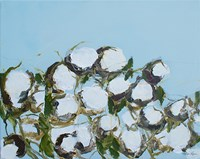 Cotton Fine-Art Print