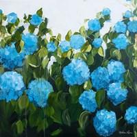 Blue Hydrangeas II Fine-Art Print