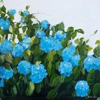 Blue Hydrangeas III Fine-Art Print