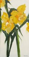 Daffodil I Fine-Art Print
