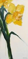 Daffodil II Fine-Art Print