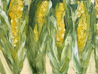 Corn Fine-Art Print
