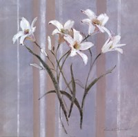 Stripes and Lilies Fine-Art Print