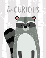 Be Curious Raccoon Fine-Art Print