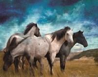 Starry Night Horse Herd Fine-Art Print
