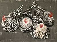 Four Hens Fine-Art Print