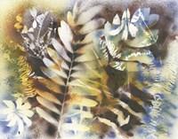 On the Wild Side Fine-Art Print