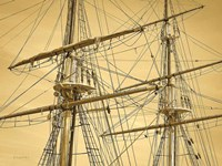 Crows Nest Fine-Art Print