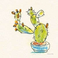 Cacti Garden V Framed Print