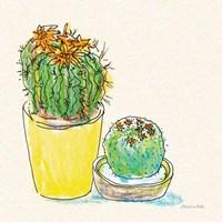 Cacti Garden IV Framed Print
