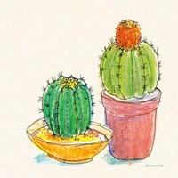 Cacti Garden III Framed Print