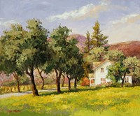 California Spring Fine-Art Print