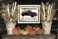 Pumpkin Patch Still Life Fine-Art Print