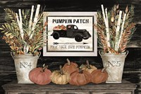 Pumpkin Patch Still Life Fine-Art Print