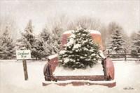 Rustic Christmas Trees Fine-Art Print