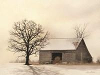 Winter Shadows Fine-Art Print