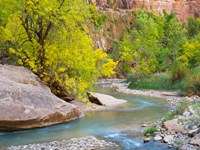 Utah Zion National Park, Virgin River Fine-Art Print