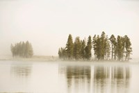 Morning Fog Along The Yellowstone River In Yellowstone National Park Fine-Art Print