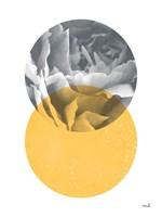 Blossoms I v2 Fine-Art Print