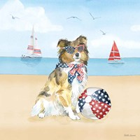 Summer Paws Patriotic V Fine-Art Print