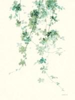 Trailing Vines II Fine-Art Print