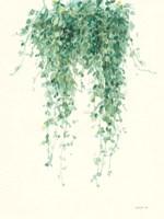 Trailing Vines I Fine-Art Print