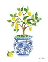 Lemon Chinoiserie I Fine-Art Print