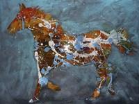 Speckled Pony Fine-Art Print