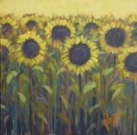 Sun Up Fine-Art Print