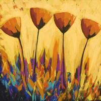 Symphony of Color Fine-Art Print