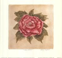 Ruby Peony Fine-Art Print