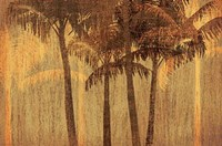 Sunset Palms III Fine-Art Print