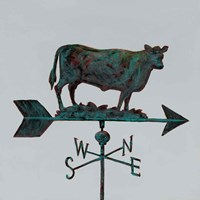 Rural Relic Cow Fine-Art Print