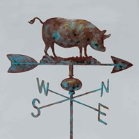 Rural Relic Pig Fine-Art Print