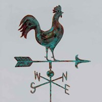 Rural Relic Rooster Fine-Art Print