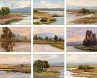 Jewels of the Wetlands, Series One Fine-Art Print