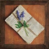 Letters To Home II Fine-Art Print