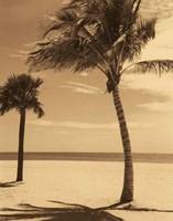 Palm Beach I Fine-Art Print