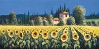 Summer Blooms Fine-Art Print