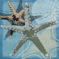 Ocean's Delight II Fine-Art Print