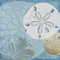 Ocean's Delight III Fine-Art Print