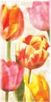 Glowing Tulips II Fine-Art Print