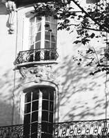 Autumn Shadows I Fine-Art Print